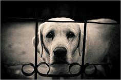 Why the sad face?  I'll be  back.. - ☹ www.pinterest.com/WhoLoves/Sad-Face ☹ #sadface