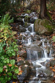 Landscape Photos, Waterfalls, Outdoor, Artists, Outdoors, Falling Waters, Artist, Waterfall, Outdoor Games