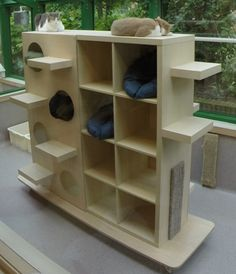Really clever idea – make individual resting places from IKEA shelving by adding extra partitions (Desforges et al Copyright WALTHAM Centre for Pet Nutrition, Mars Petcare Smartest Dog Breeds, Cat Run, Cat Towers, Cat Playground, Outdoor Playground, Cat Shelves, Animal Room, Cat Enclosure, Cat Climbing
