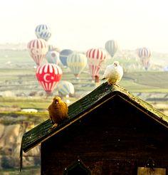 Pegion house in a perfect location. #cappadocia #kapadokya #turkey #luxury #hotel #relaischateaux #boutique #museumhotel #uchisar #cave #cavehotel #museum #honeymoon #balayı #butik #otel #güvercin #güvercinlik #manzara #view #balon #balonlar #balloons #balloon #ballooning #pegions #pegion #house #morning