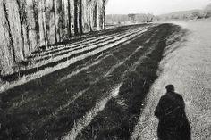 Henri Cariter-Bresson, Provence (last self portrait)  1999  gelatin silver print