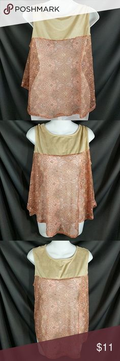 """Sheer Lace & Suede Floral Sleeveless Top Sz M This top is so much cuter than the pictures! Lightweight suede top section with lace down the body. Loose fitting g. Chest around at underarms measures 43"""" around. Length from shoulder 23"""". A little higher on the sides and longer in front and back. See all 6 pictures for details. Excellent condition. No holes or stains  Smoke free. CT2 Cato Tops"""