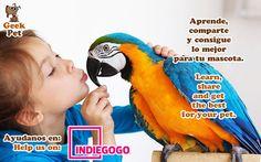 Compártelo para ayudarnos :) Share to help us https://www.indiegogo.com/projects/geekpet-comunidad-de-pet-lovers/ #mascota #pet #startup #peru #petlover