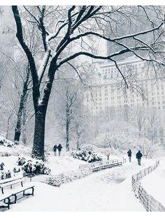 Les plus belles photos Instagram de la neige à New York 37