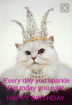 50 Fun (& Funny) Happy Birthday Quotes To Send Your Best Friend On Her Big Day - Happy Birthday Funny - Funny Birthday meme - - 50 Funny Birthday Quotes To Send To Your Best Friend On Her Big Day Birthday Gif Funny, Birthday Memes For Her, Best Birthday Quotes, Happy Birthday Meme, Happy Birthday Pictures, Happy Birthday Messages, Cat Birthday, Happy Birthday Greetings, It's Your Birthday