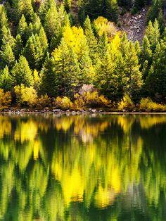 ✮ Autumn Reflection - Georgetown Lake, Colorado