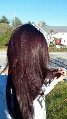 :3 Black Cherry Hair Color