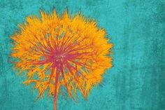 Dandelion. Floral Painting Blue Yellow Abstract Art Wall