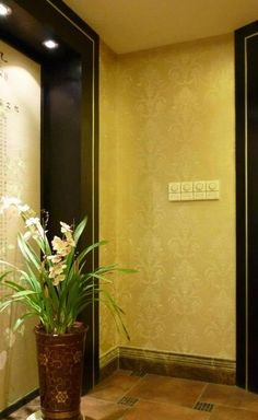 Artist David Hsueh used the Vase & Pearls Allover Stencil to add a rich, classic touch to an elevator hallway.
