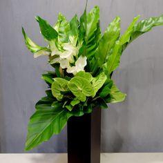 FUGAでは、和・洋・モダンなど様々な雰囲気でアレンジメント、スタンド花、ボックスギフトをオーダーメイドで対応する。
