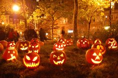 - Martin Pengelly: A week or so ago, a series of enormous pumpkins appeared around the co-op in which I live.