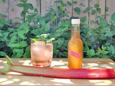 DIY Rhubarb Bitters. Awesome Idea. Just thinking about some interesting cocktails.