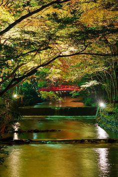 Red bridge ~ Ogunijinja Shrine, Shizuoka pref, Japan