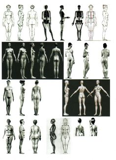 female figure reference sheet
