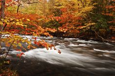 Fall landscapes – Cottage Life