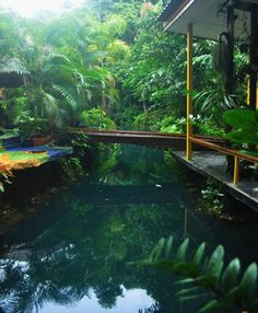 Booking.com: Blessed Koh Chang , Ko Chang, Thailand  - 20 Guest reviews . Book your hotel now!