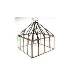 Glass garden cloche