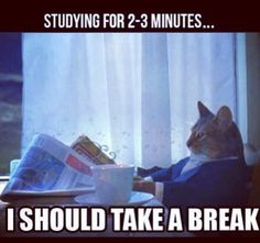 Bahaha that's so me when I have to study