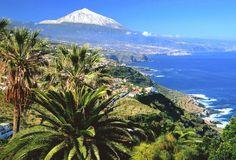 #lieberDschinni Ein Urlaub auf Teneriffa würde mich freuen. ☺