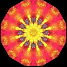 Kaleidoscope mandala optical art by Sequin World
