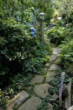 A Whole Bunch Of Beautiful shade plants and flowers make a statement with this #Garden path-- relax.