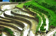 Most of attractions in Sapa must see ~ Easy Trekking Sapa Tours
