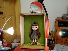 Blythe light box, good idea for those windy, wet or just difficult to photograph days!