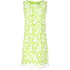 Precis Petite Lace Sixties Shift Dress ($110) ❤ liked on Polyvore featuring dresses, petite, sale, petite shift dress, green dress, green shift dress, lacy dress and shift dress