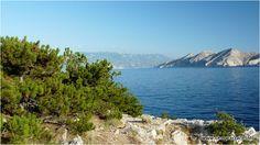 Piękna zielona przyroda, turkusowy Adriatyk i zapierające dech w piersiach pasmo górskie Velebit w tle - taka jest własnie Chorwacja, a dokładniej wyspa Krk. #chorwacja #krk #velebit #croatia