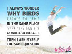 I always wonder..