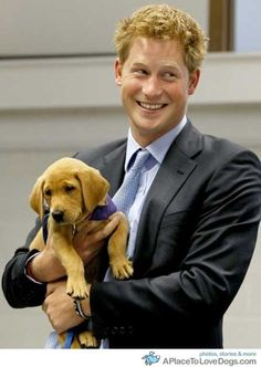 Prince Harry & puppy! How can you not like this photo?