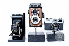 Garden Home Again - Vintage Camera bookends finished 1
