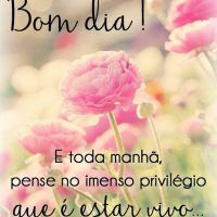 Daily Bible Inspiration, Portuguese Quotes, Peace Love And Understanding, Good Morning Messages, Funny Pins, Peace And Love, Thoughts, Humor, Facebook