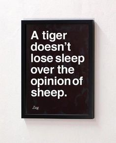 a tiger doesn't lose sleep over the opinion of sheep...