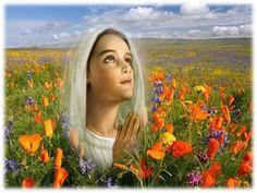 JEZUS en MARIA Groep.: ALLES HEEFT EEN BETEKENIS