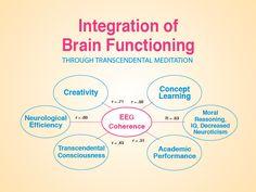 higher brain - Google-haku