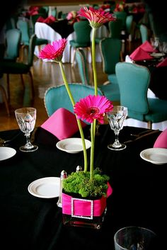 square vase with tall gerbera daisies