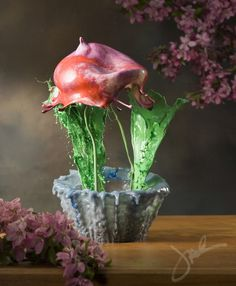 Vessels and Blooms, Liquid Flower Photos by Jack Long