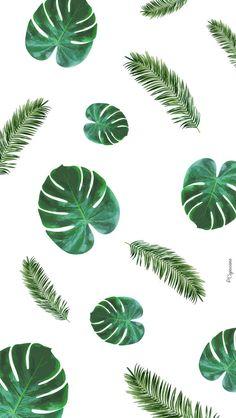 Fond d'écran Palmier La Capuciine #pattern #patterndesign #surfacepattern