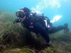 Scuba Diver Girls | Fun Diving at La Jolla Cove!