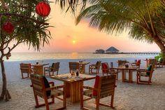 The Maldives...someday :)