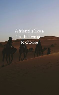 Friendship Quotes In English, Friendship Quotes Wallpapers, English Quotes, Friends Are Like, Sweet Memories, Best Relationship, Free Reading, Text Messages, Cover Photos