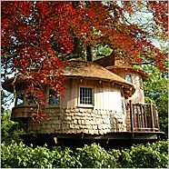 So bad ass--real tree houses good enough to live in! Design your own interior. I want one!!