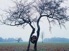 andy goldsworthy art | ... and Tides – Andy Goldsworthy – Ciné Reg'art spécial Land art