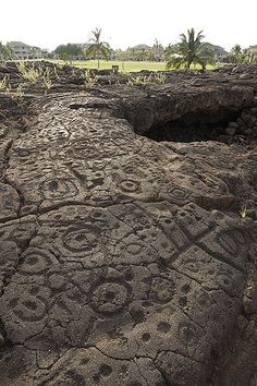 Hawaiian Petroglyphs | Hawaiian Petroglyphs | Flickr - Photo Sharing!