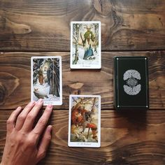 "Таро Дикого Леса (The Wildwood Tarot)  теперь в магазине ""Ведьмин Котёл""  https://www.skuld.com.ua/mantika/taro-dikogo-lesa-the-wildwood-tarot"