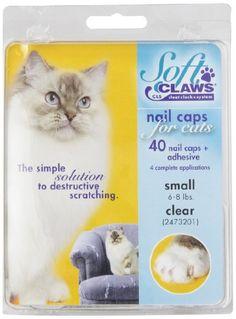 Feline Soft Claws Cat Nail Caps Take-Home Kit, Small, Clear Soft Claws http://www.amazon.com/dp/B003WP5O5G/ref=cm_sw_r_pi_dp_WLwDvb1R1F4YP
