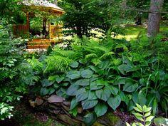 Gazebo in the secret garden Garden Landscape Design, Garden Landscaping, Jardins D'hostas, Shade Tolerant Plants, Shade Plants, The Secret Garden, Most Beautiful Gardens, Woodland Garden, Shade Garden