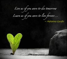 Learn as if you were to live forever - quote by Gandhi