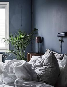 dark walls and oversized green plants in the bedroom